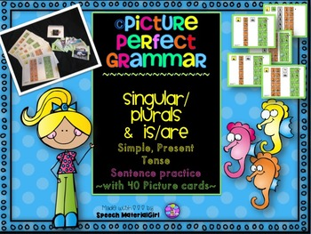 Speech Therapy PICTURE PERFECT GRAMMAR singular plural present tense sentence
