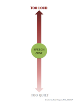 Speech Zone Meter: A Volume and Rate Monitor
