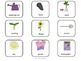 Speech and Language Activities for The Carrot Seed
