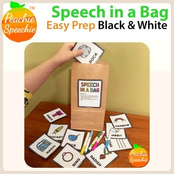 Speech in a Bag: Speech and Language Take Home Activities