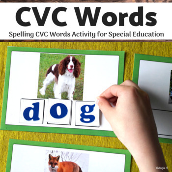 #luckydeals CVC Words, Spelling CVC Words for Special Education