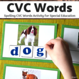 CVC Words, Spelling CVC Words for Special Education