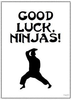 Spelling Ninja - Spelling Program
