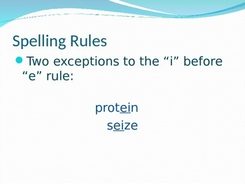 Spelling Powerpoint- Rules and Reminders
