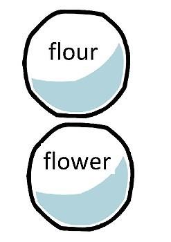 Spelling Snowball Fight - Homophones