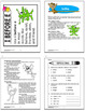 3rd Grade Spelling Activities + Lesson, Spelling Game, NINE Spelling Posters