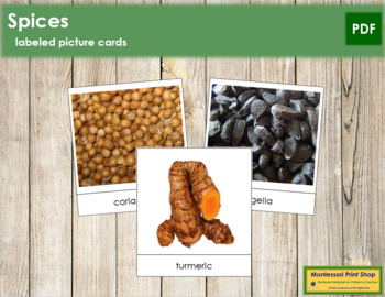 Spice Picture Cards