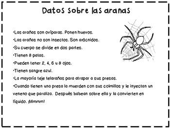 Spider /Arañas