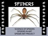 Spider Art Powerpoint
