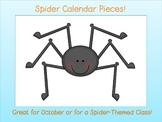 Spider Calendar Pieces