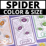 Spider Activities | Halloween Color & Size Sorting Spiders