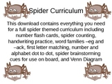 Spider Curriculum