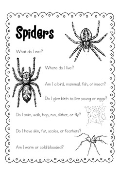 Spider Day Pack { Freebie }