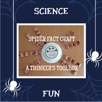 Spider Fact Craft