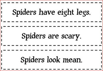 Spider Fact and Opinion Cards