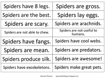 Spider Fact and Opinion Craftivity