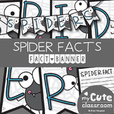 Spider Facts Banner