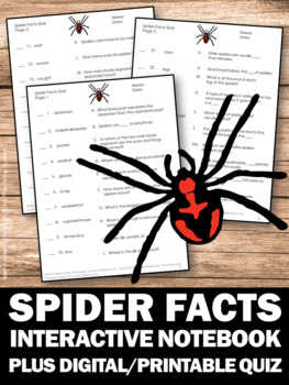Spider Facts, Halloween Science Interactive Notebook Craftivity foldable