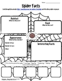 Spider Facts Worksheet-Technology Integration