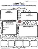 Spider Facts Worksheet-Technology Integration