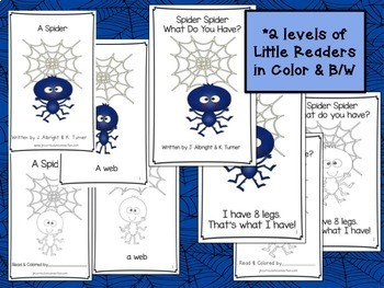 Spider Movement Song! Spider, Spider! Shared Reading & Activities!