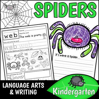 Spider Kindergarten Pack