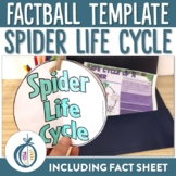 Spider Life Cycle Factball and Comprehension Sheet