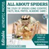 Spider Life Cycle-Math, Literacy and Science