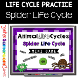 Spider Life Cycle Mini Powerpoint Game