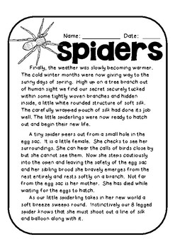 Spider Life Cycle Story and Comprehension