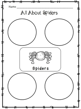 Spider Literacy Unit And Activities