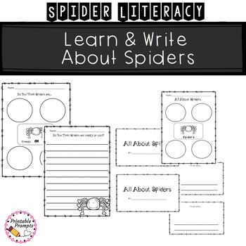 Spider {Math Literacy Science}