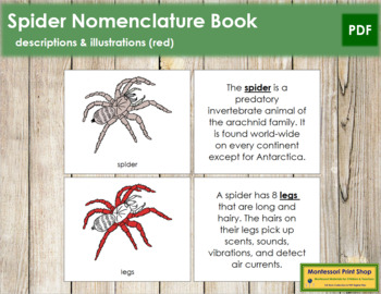 Spider Nomenclature Book (Red)