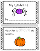 Spider Positional Word Book