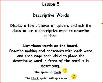 Spider Power Point Presentation