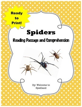 Spider Reading Passage and Comprehension