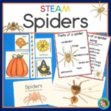 Spider STEM / STEAM activities