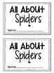 Spider Science Activity