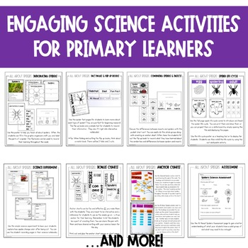Spiders Unit: Fact Sheets, Attributes, Life Cycle, Graphic Organizers, and More!