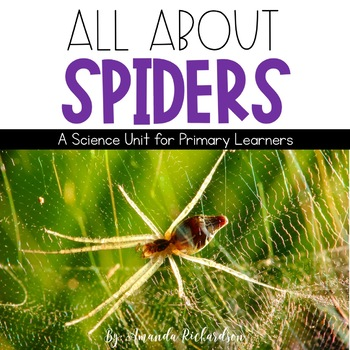 Spiders Unit: Fact Sheets, Attributes, Life Cycle, Graphic
