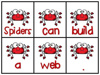 Spider Scrambled Sentences