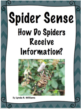 Spider Sense Lesson and Follow Up Pages