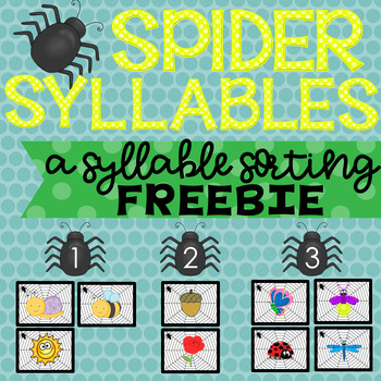 Spider Syllable Sort FREEBIE!