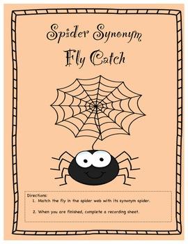 Spider Synonym/Arachnid Antonym Fly Catch Folder Games