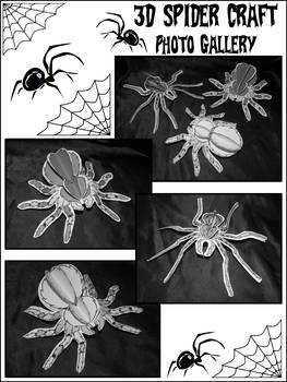 Spider-Tarantula Activities: 3D Spiders Craft Activity Packet