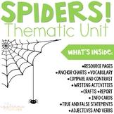 Spider Unit Activities