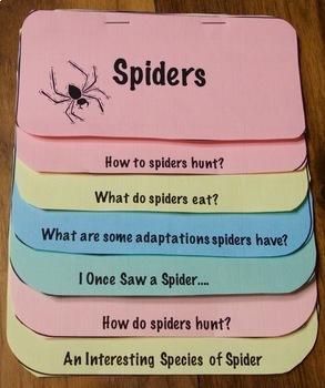Spider Unit Bundle