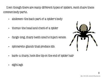 Spider Unit for Big Kids