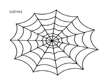 Spider Web Categories