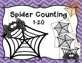 Spider Web Counting 1-20